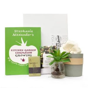green thumb gift hamper